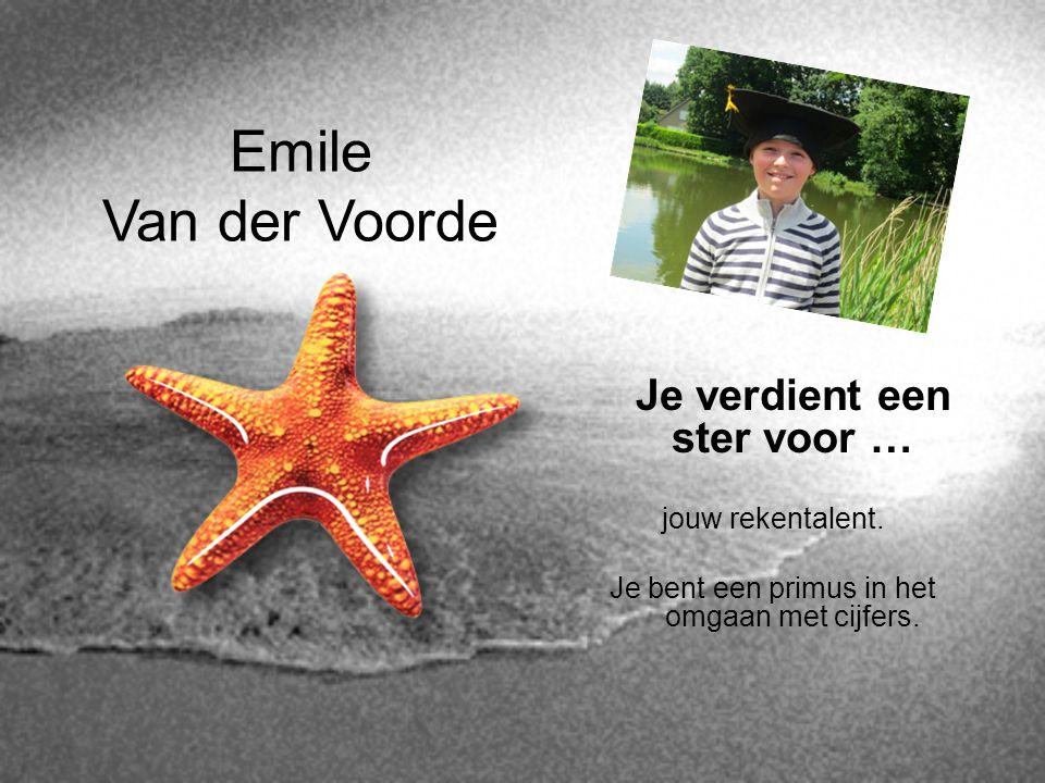 Emile Van der Voorde Je verdient een ster voor … jouw rekentalent. Je bent een primus in het omgaan met cijfers.