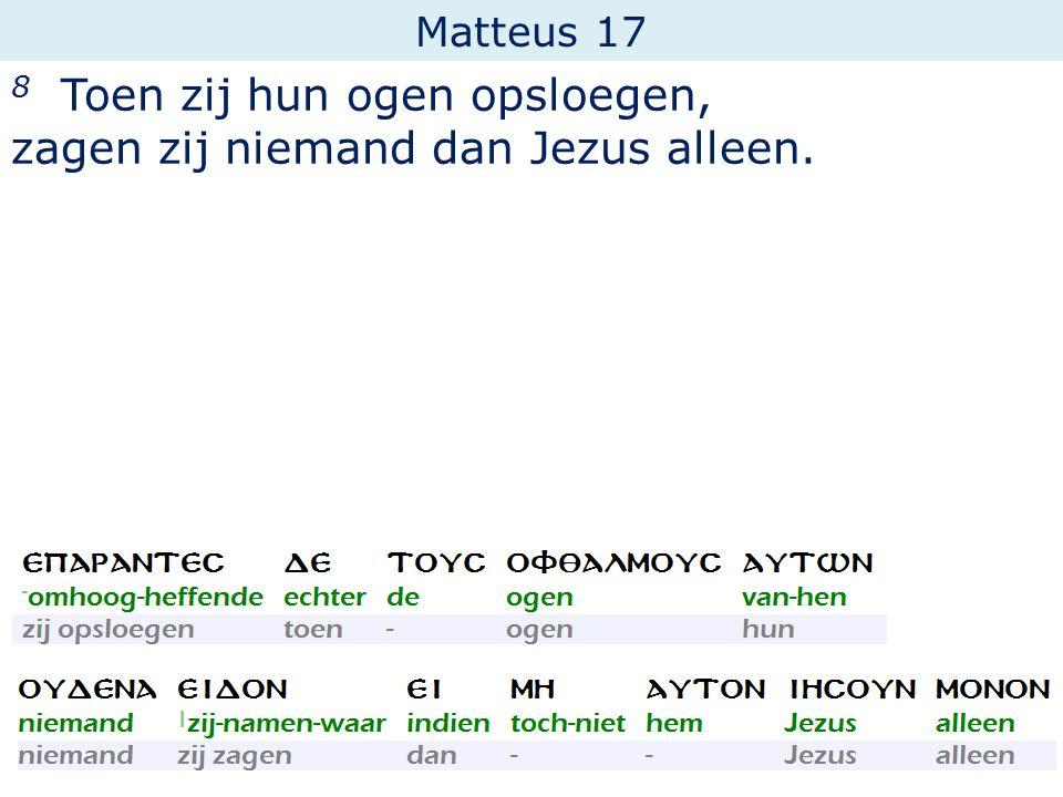 Matteus 17 8 Toen zij hun ogen opsloegen, zagen zij niemand dan Jezus alleen.