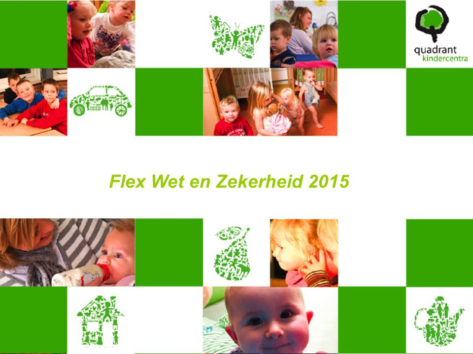 Flex Wet en Zekerheid 2015