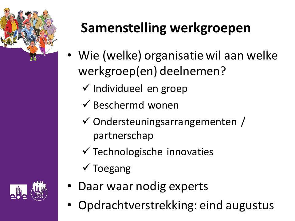 Samenstelling werkgroepen Wie (welke) organisatie wil aan welke werkgroep(en) deelnemen.