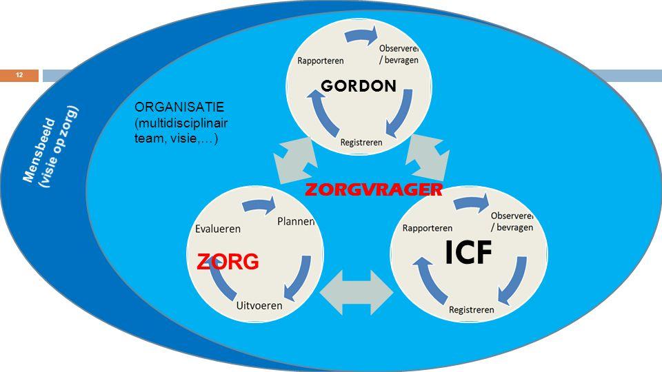 ORGANISATIE (multidisciplinair team, visie,…) GORDON ICF ZORGVRAGER ZORG 12