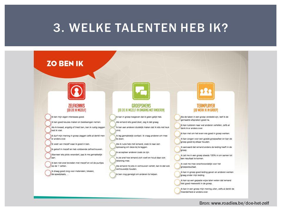 3. WELKE TALENTEN HEB IK? Bron: www.roadies.be/doe-het-zelf