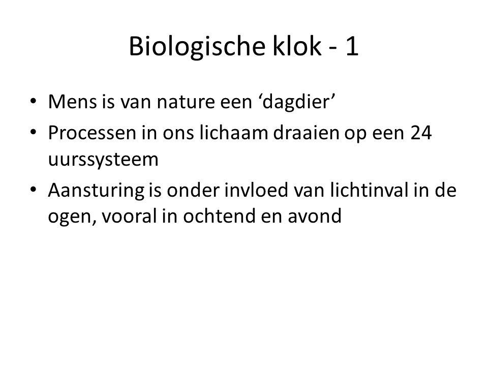 Biologische klok - 2 Niet snel te veranderen, denk aan jetlag Met als gevolg: slaperigheid, vermoeidheid, minder concentreren Vergelijkbaar effect bij mensen in nachtwerk
