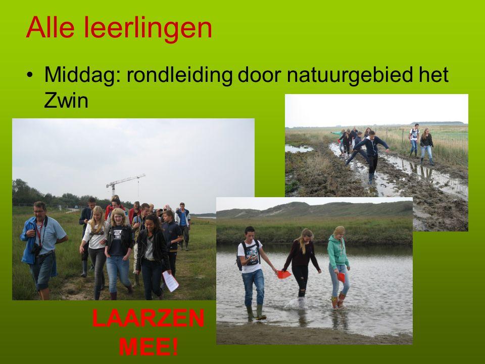 Alle leerlingen Middag: rondleiding door natuurgebied het Zwin LAARZEN MEE!