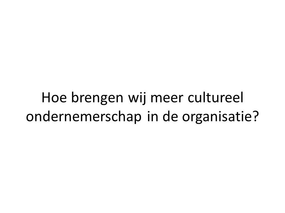 Hoe brengen wij meer cultureel ondernemerschap in de organisatie?