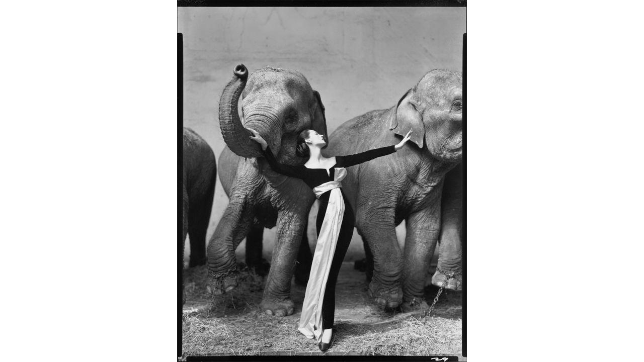 Indrukwekkende portretfoto's: Minimalistisch Zwart-Wit Hoog contrast Geportretteerde kijkt recht in de camera Witte achtergrond Serie The American West Reisde door westelijk deel van Amerika (1979-1984) tijdens een zware economische recessie Portretten van zwervers, boeren, mijnwerkers, serveersters Hij focust zich daarvoor op de 'mens'.