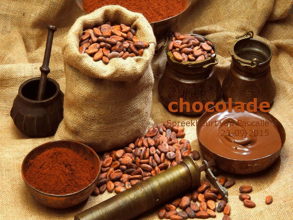 chocolade Spreekbeurt van Pascalle 23-09-2015