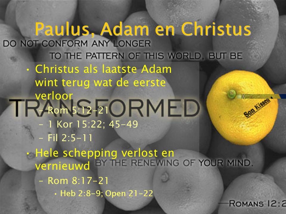Paulus, Adam en Christus Christus als laatste Adam wint terug wat de eerste verloor –Rom 5:12-21 –1 Kor 15:22; 45-49 –Fil 2:5-11 Hele schepping verlost en vernieuwd –Rom 8:17-21 Heb 2:8-9; Open 21-22