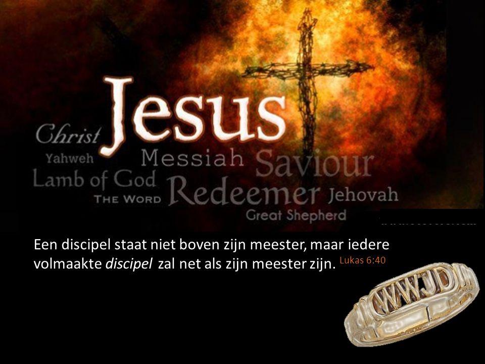 Een discipel staat niet boven zijn meester, maar iedere volmaakte discipel zal net als zijn meester zijn. Lukas 6:40