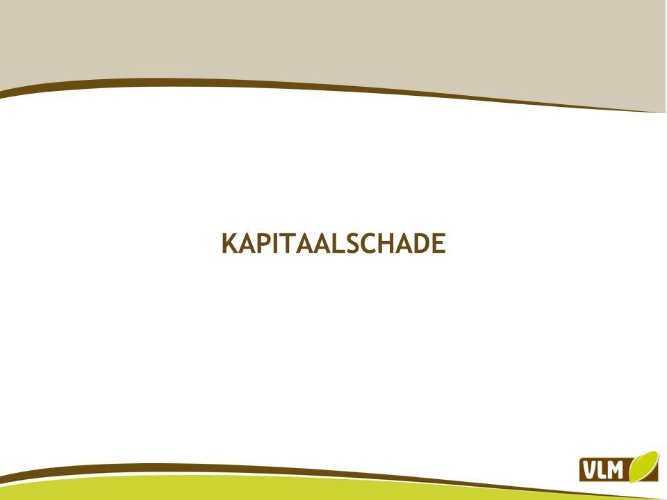 KAPITAALSCHADE