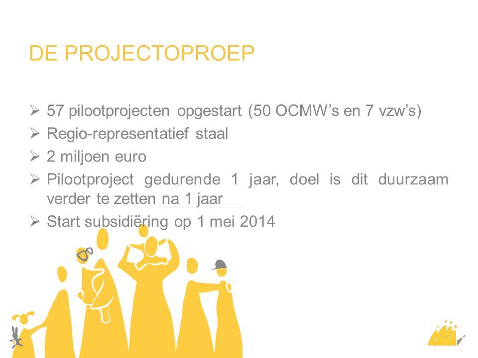 DE PROJECTOPROEP  57 pilootprojecten opgestart (50 OCMW's en 7 vzw's)  Regio-representatief staal  2 miljoen euro  Pilootproject gedurende 1 jaar, doel is dit duurzaam verder te zetten na 1 jaar  Start subsidiëring op 1 mei 2014