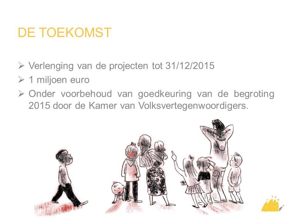 DE TOEKOMST  Verlenging van de projecten tot 31/12/2015  1 miljoen euro  Onder voorbehoud van goedkeuring van de begroting 2015 door de Kamer van Volksvertegenwoordigers.