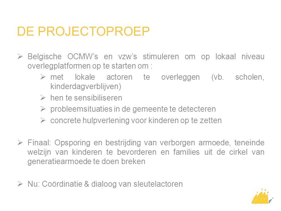 DE PROJECTOPROEP  Belgische OCMW's en vzw's stimuleren om op lokaal niveau overlegplatformen op te starten om :  met lokale actoren te overleggen (vb.