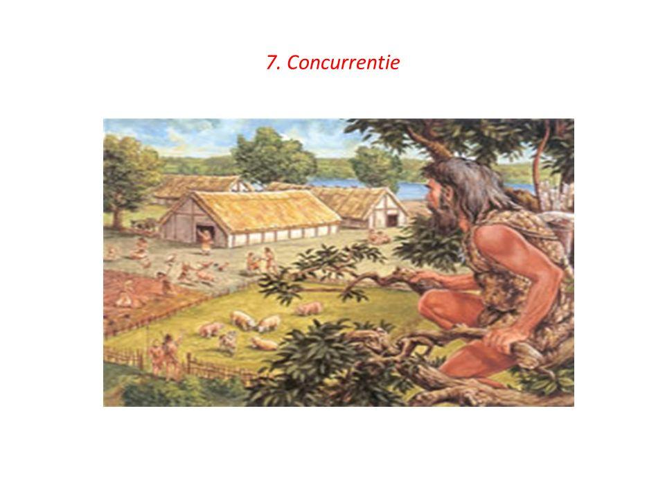 7. Concurrentie