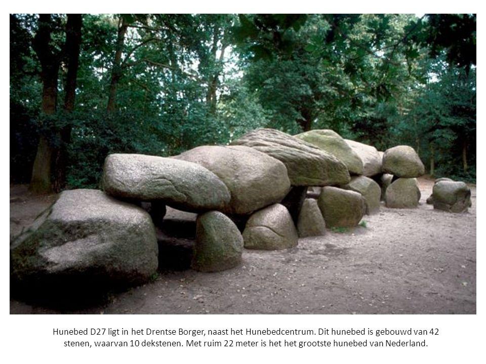 Hunebed D27 ligt in het Drentse Borger, naast het Hunebedcentrum. Dit hunebed is gebouwd van 42 stenen, waarvan 10 dekstenen. Met ruim 22 meter is het