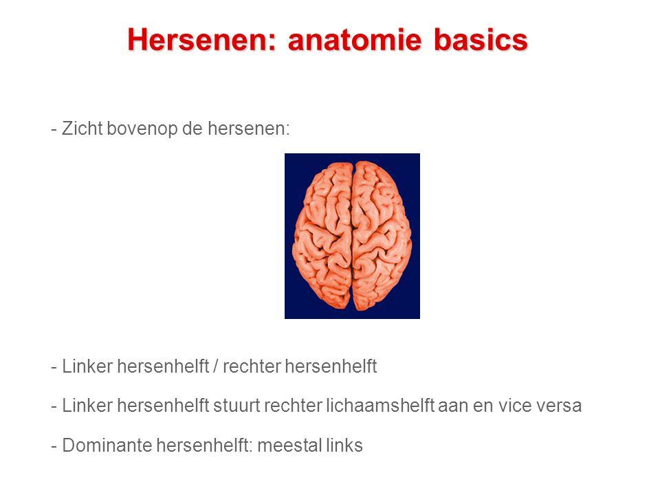 Hersenen: anatomie basics - Zicht bovenop de hersenen: - Linker hersenhelft / rechter hersenhelft - Linker hersenhelft stuurt rechter lichaamshelft aan en vice versa - Dominante hersenhelft: meestal links