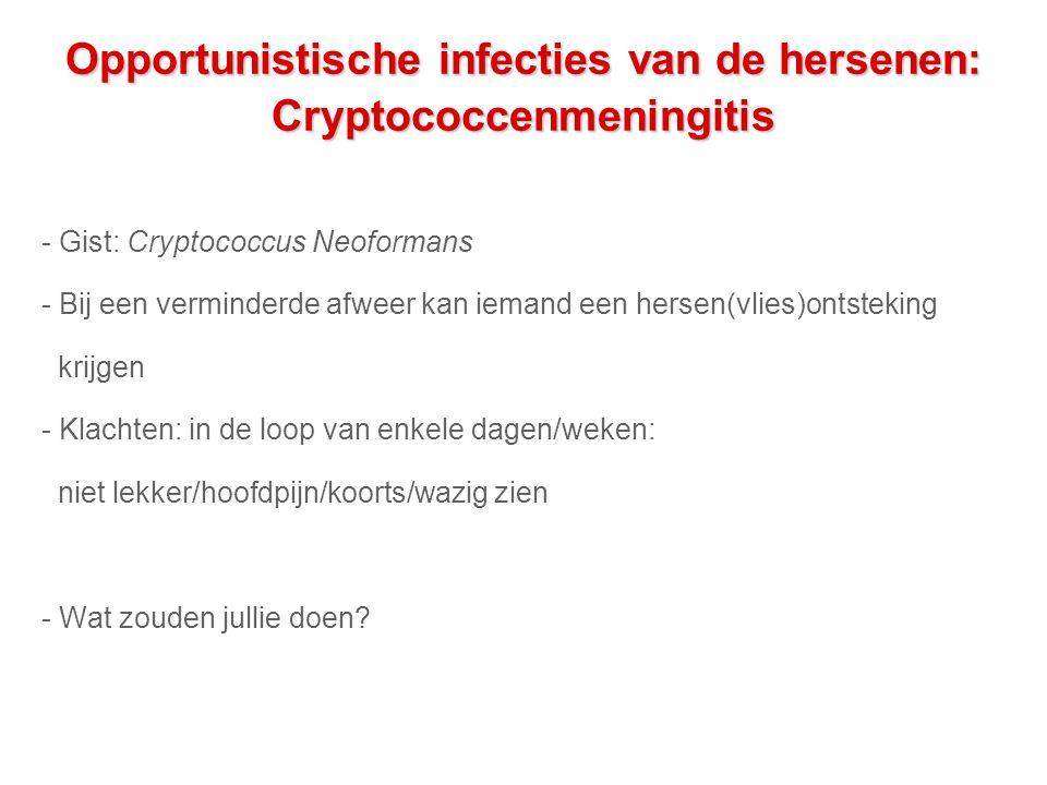 Opportunistische infecties van de hersenen: Cryptococcenmeningitis - Gist: Cryptococcus Neoformans - Bij een verminderde afweer kan iemand een hersen(vlies)ontsteking krijgen - Klachten: in de loop van enkele dagen/weken: niet lekker/hoofdpijn/koorts/wazig zien - Wat zouden jullie doen?