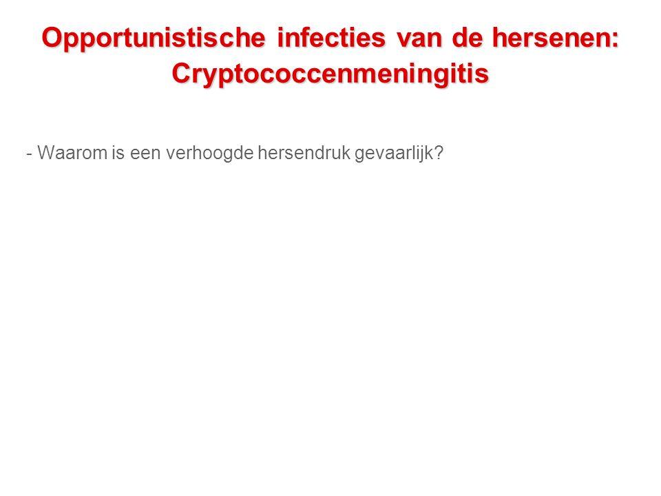 Opportunistische infecties van de hersenen: Cryptococcenmeningitis - Waarom is een verhoogde hersendruk gevaarlijk?