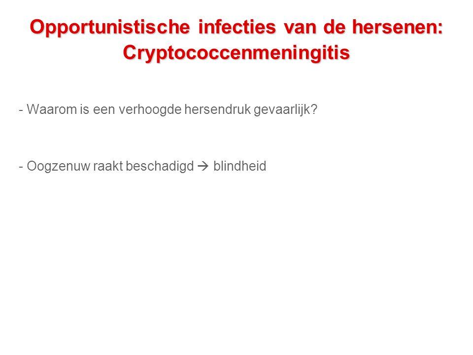 Opportunistische infecties van de hersenen: Cryptococcenmeningitis - Waarom is een verhoogde hersendruk gevaarlijk.