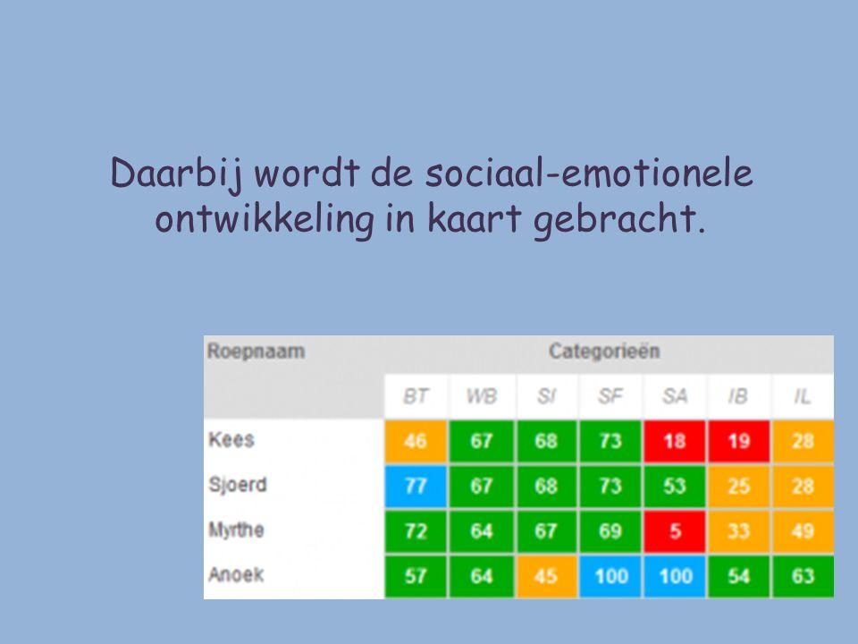Daarbij wordt de sociaal-emotionele ontwikkeling in kaart gebracht.