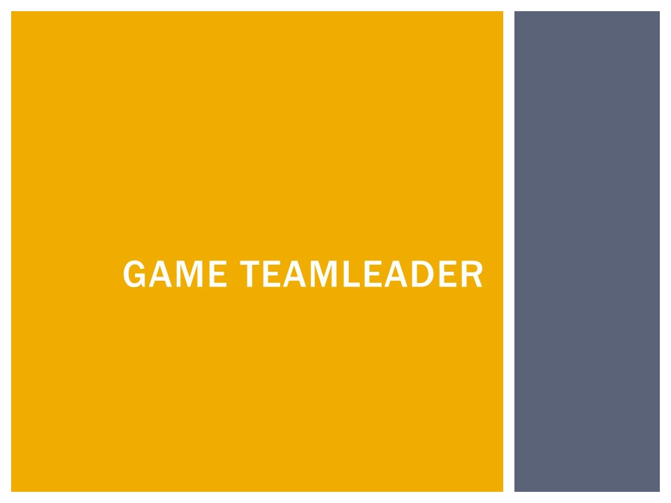 GAME TEAMLEADER