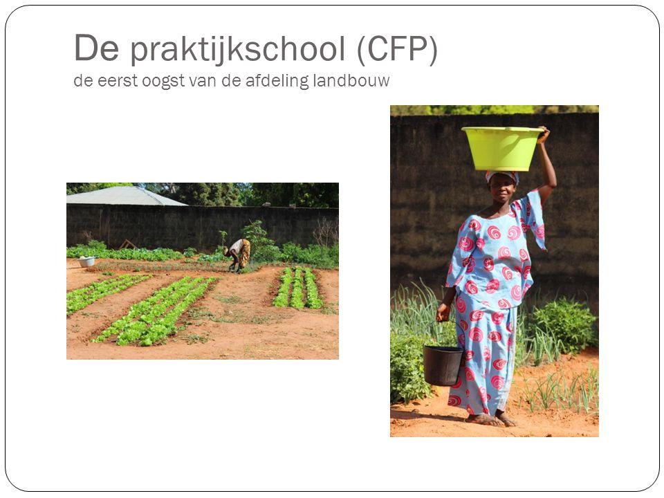 De praktijkschool (CFP) de eerst oogst van de afdeling landbouw