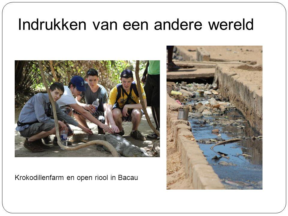 Indrukken van een andere wereld Krokodillenfarm en open riool in Bacau