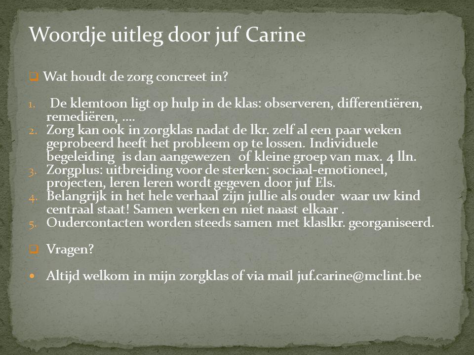 Woordje uitleg door juf Carine  Wat houdt de zorg concreet in.