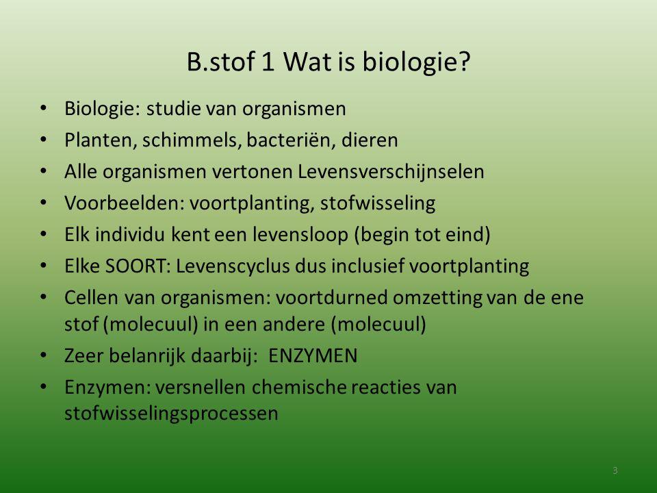 B.stof 1 Wat is biologie? Biologie: studie van organismen Planten, schimmels, bacteriën, dieren Alle organismen vertonen Levensverschijnselen Voorbeel