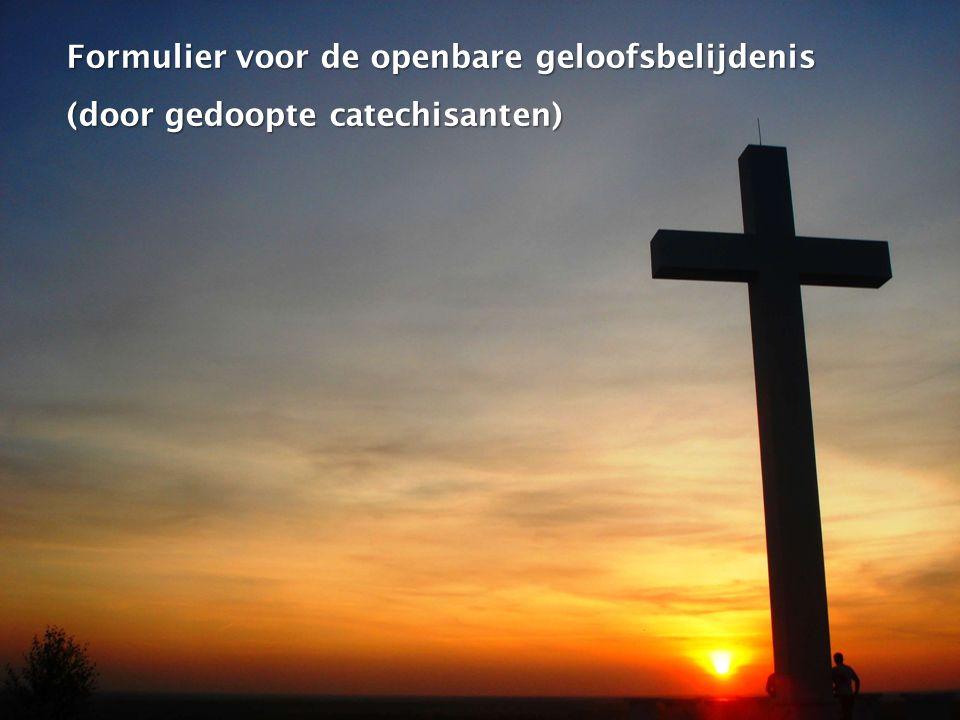 Formulier voor de openbare geloofsbelijdenis (door gedoopte catechisanten)
