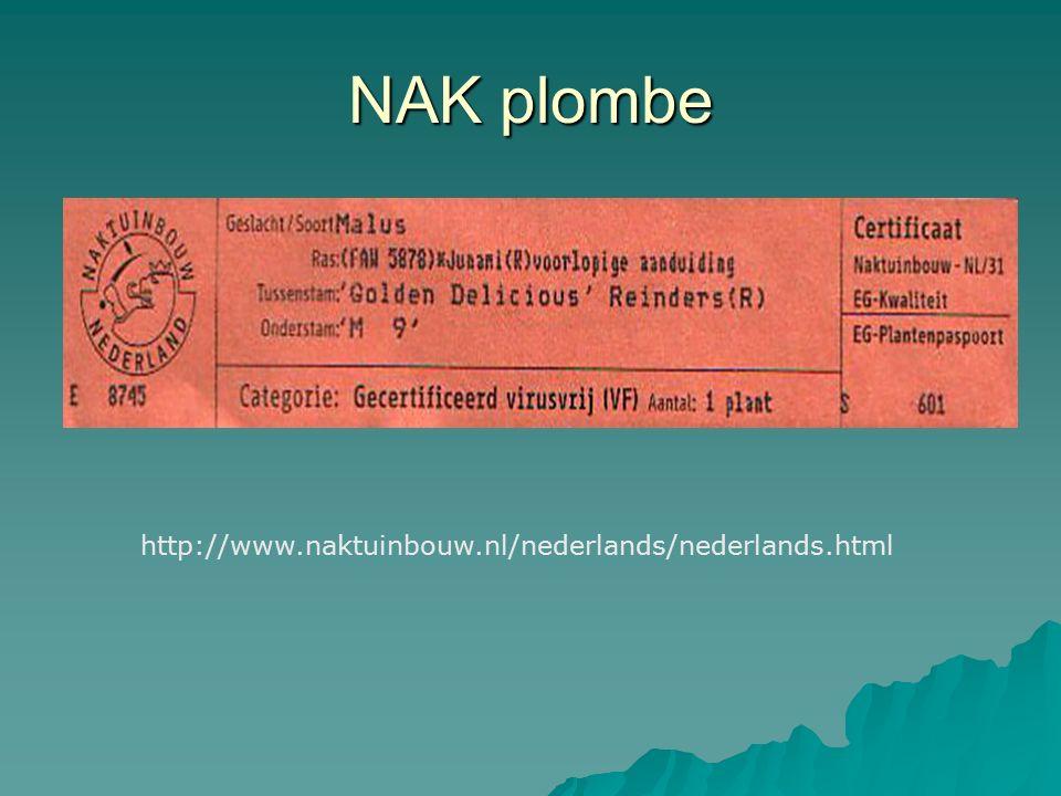 NAK plombe http://www.naktuinbouw.nl/nederlands/nederlands.html