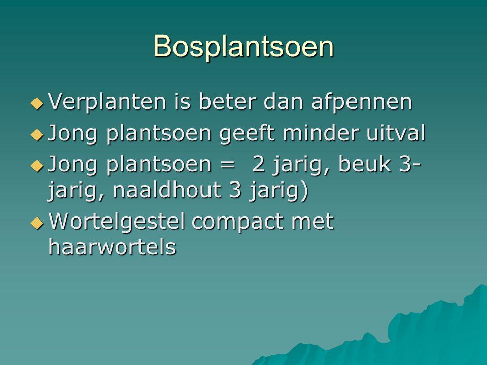 Bosplantsoen  Verplanten is beter dan afpennen  Jong plantsoen geeft minder uitval  Jong plantsoen = 2 jarig, beuk 3- jarig, naaldhout 3 jarig)  W