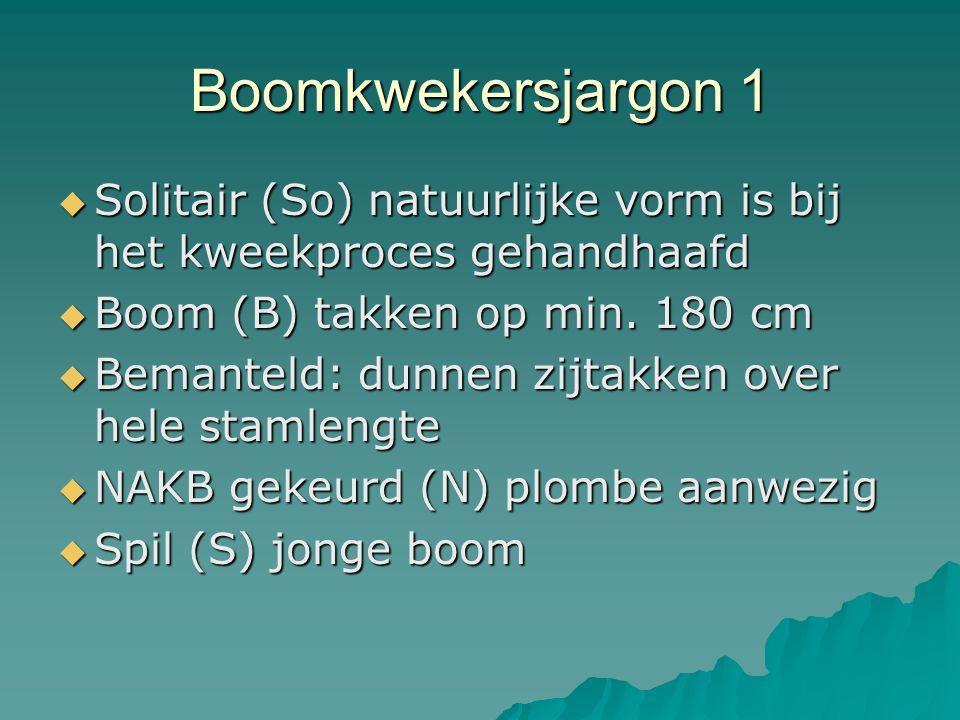 Boomkwekersjargon 1  Solitair (So) natuurlijke vorm is bij het kweekproces gehandhaafd  Boom (B) takken op min. 180 cm  Bemanteld: dunnen zijtakken