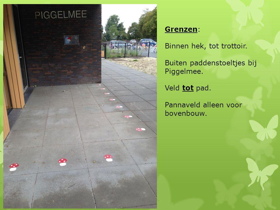 Grenzen: Binnen hek, tot trottoir.Buiten paddenstoeltjes bij Piggelmee.