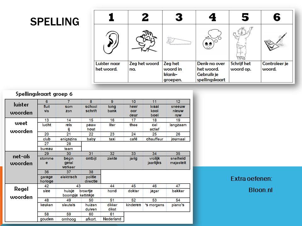 BOEKBESPREKING, SPREEKBEURT EN WERKSTUK 1.Boekbespreking 2.Spreekbeurt 3.Werkstuk