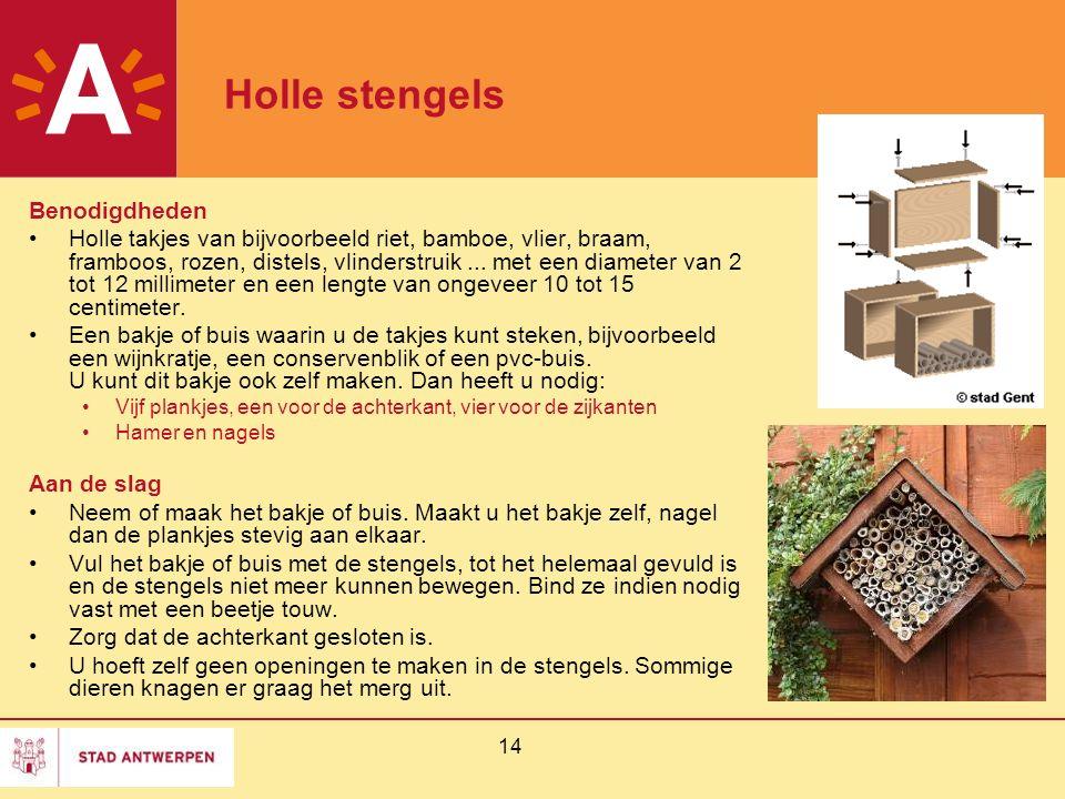 14 Holle stengels Benodigdheden Holle takjes van bijvoorbeeld riet, bamboe, vlier, braam, framboos, rozen, distels, vlinderstruik... met een diameter
