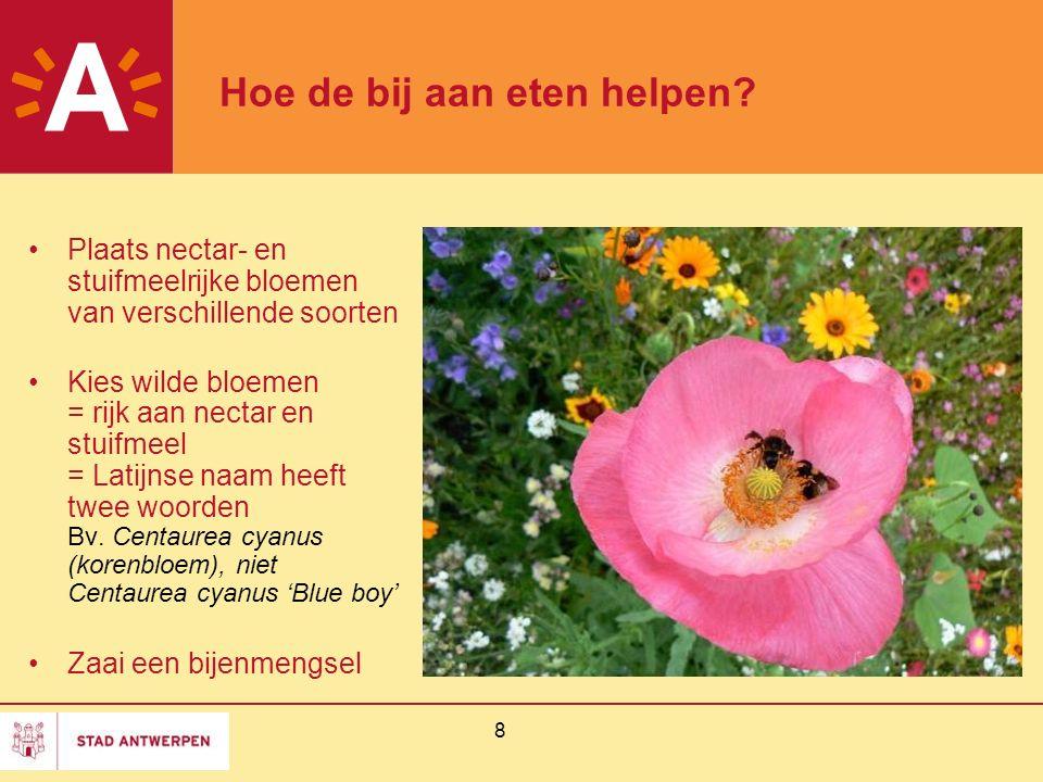 8 Hoe de bij aan eten helpen? Plaats nectar- en stuifmeelrijke bloemen van verschillende soorten Kies wilde bloemen = rijk aan nectar en stuifmeel = L