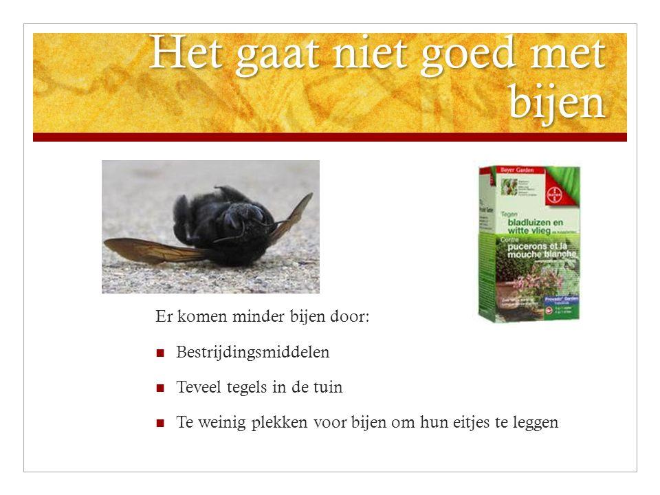 Het gaat niet goed met bijen Er komen minder bijen door: Bestrijdingsmiddelen Teveel tegels in de tuin Te weinig plekken voor bijen om hun eitjes te l