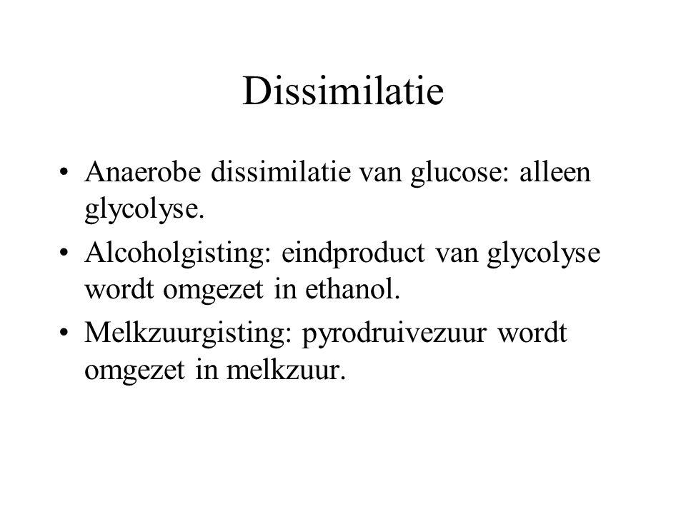Voortgezette assimilatie Assimilatie van eiwitten: Planten kunnen aminozuren assimileren uit glucose en nitraationen. Dieren alleen uit andere aminozu