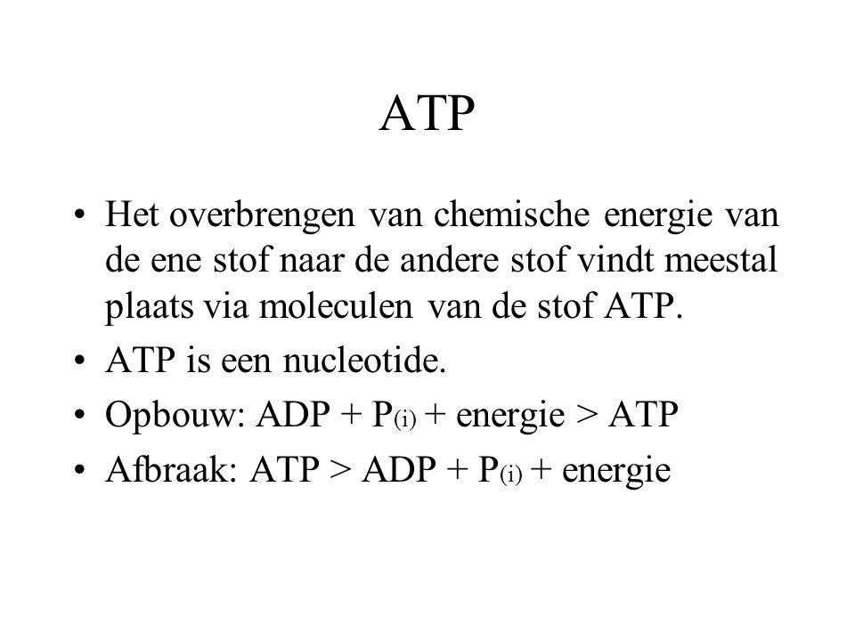 ATP Het overbrengen van chemische energie van de ene stof naar de andere stof vindt meestal plaats via moleculen van de stof ATP.