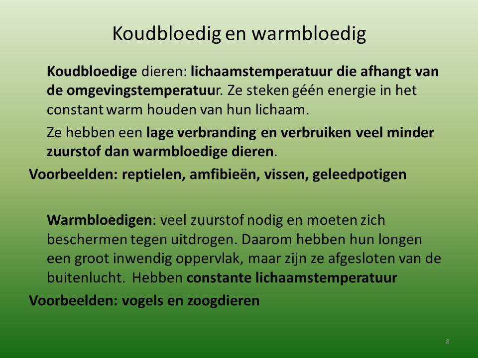 Koudbloedig en warmbloedig Koudbloedige dieren: lichaamstemperatuur die afhangt van de omgevingstemperatuur. Ze steken géén energie in het constant wa