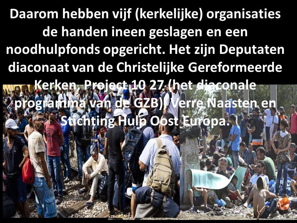 Daarom hebben vijf (kerkelijke) organisaties de handen ineen geslagen en een noodhulpfonds opgericht. Het zijn Deputaten diaconaat van de Christelijke