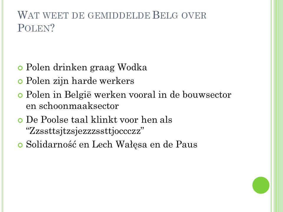 W AT WEET DE GEMIDDELDE B ELG OVER P OLEN ? Polen drinken graag Wodka Polen zijn harde werkers Polen in België werken vooral in de bouwsector en schoo