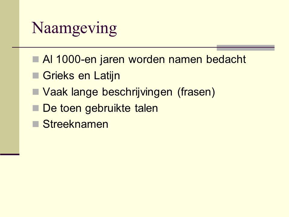 Naamgeving Al 1000-en jaren worden namen bedacht Grieks en Latijn Vaak lange beschrijvingen (frasen) De toen gebruikte talen Streeknamen