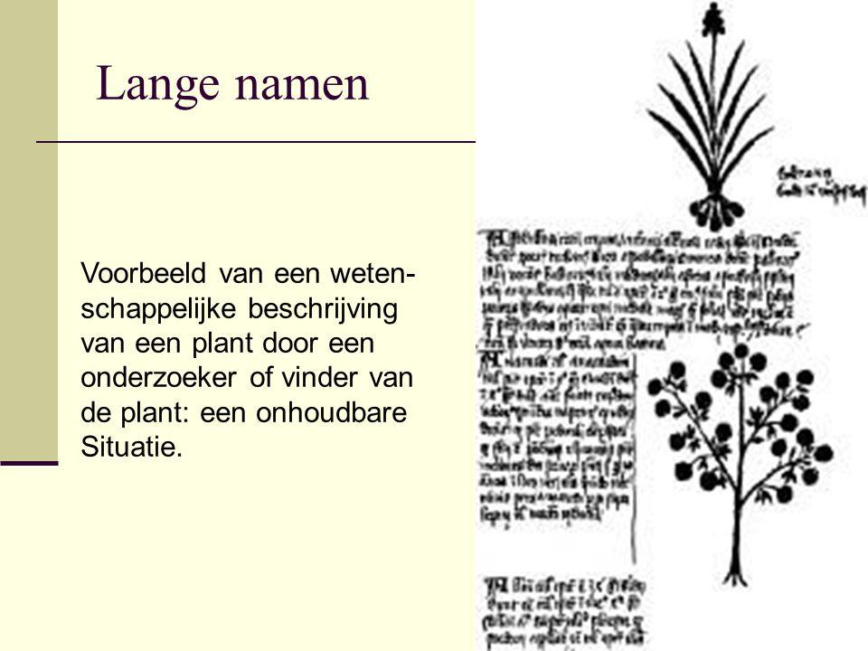 Lange namen Voorbeeld van een weten- schappelijke beschrijving van een plant door een onderzoeker of vinder van de plant: een onhoudbare Situatie.