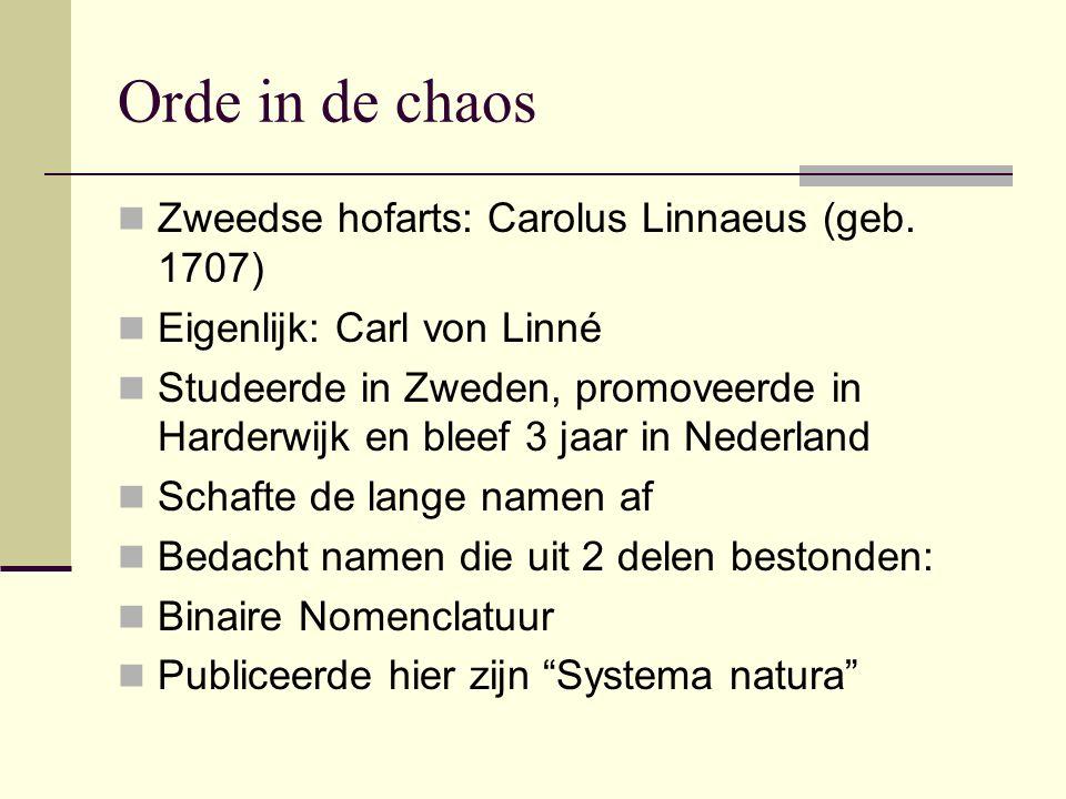 Orde in de chaos Zweedse hofarts: Carolus Linnaeus (geb. 1707) Eigenlijk: Carl von Linné Studeerde in Zweden, promoveerde in Harderwijk en bleef 3 jaa