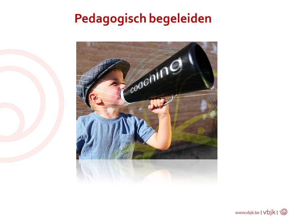 Pedagogisch begeleiden