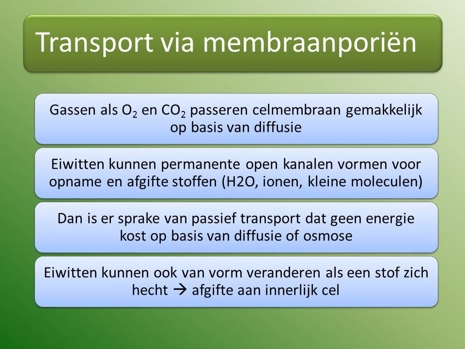 Transport via membraanporiën Gassen als O2 en CO2 passeren celmembraan gemakkelijk op basis van diffusie Eiwitten kunnen permanente open kanalen vormen voor opname en afgifte stoffen (H2O, ionen, kleine moleculen) Dan is er sprake van passief transport dat geen energie kost op basis van diffusie of osmose Eiwitten kunnen ook van vorm veranderen als een stof zich hecht  afgifte aan innerlijk cel