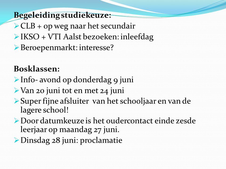Begeleiding studiekeuze:  CLB + op weg naar het secundair  IKSO + VTI Aalst bezoeken: inleefdag  Beroepenmarkt: interesse? Bosklassen:  Info- avon