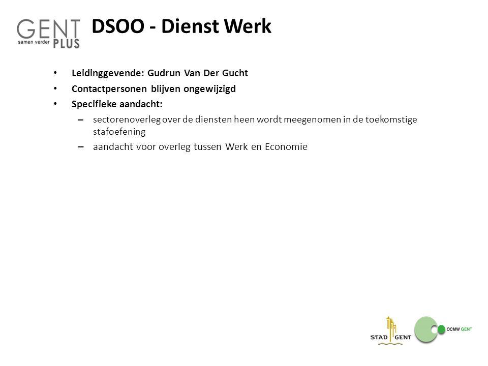 DSOO - Dienst Werk Leidinggevende: Gudrun Van Der Gucht Contactpersonen blijven ongewijzigd Specifieke aandacht: – sectorenoverleg over de diensten he